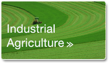 food-ag-agriculture3.png
