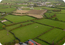Irish Fields