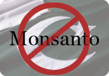 No Monsanto in Pakistan