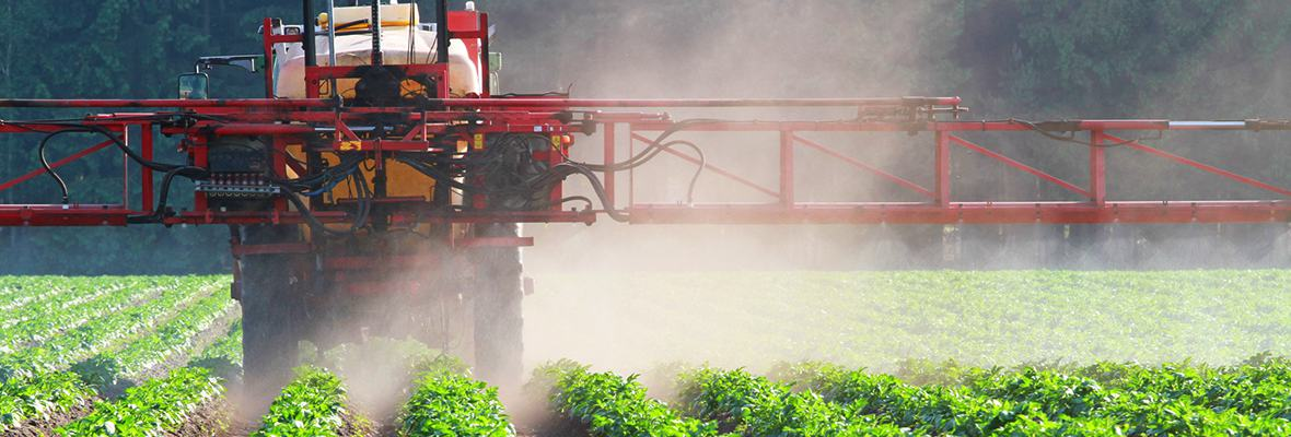 Dicamba spray