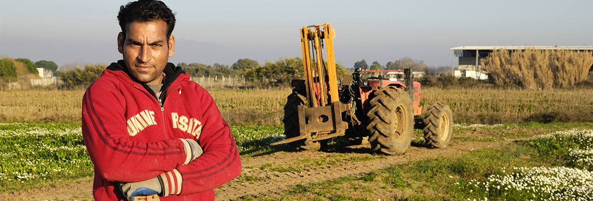 Farm worker in field