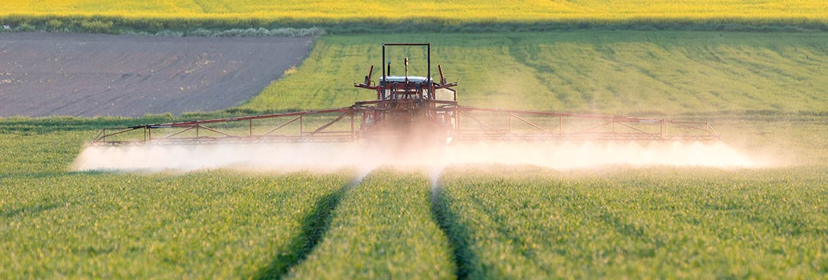 Spray glyphosate farm