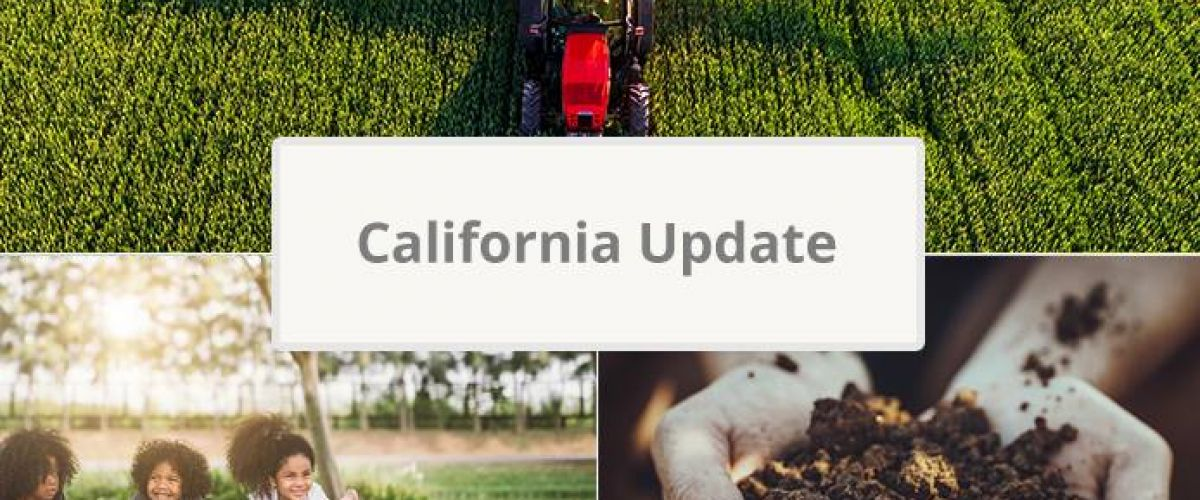 California News Update
