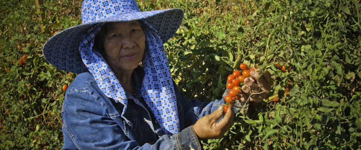 farmworker woman