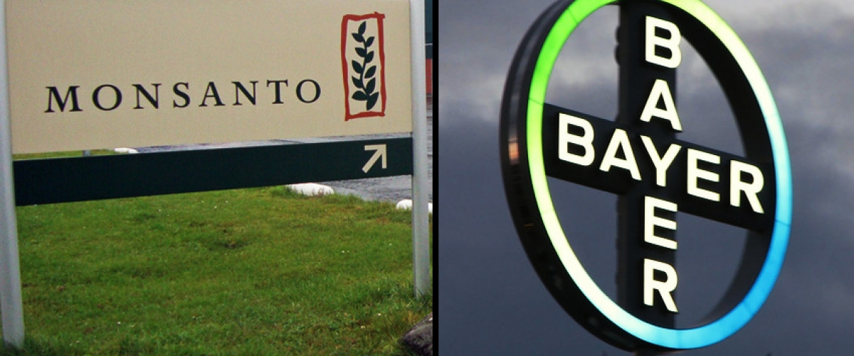 Monsanto Bayer mega merger