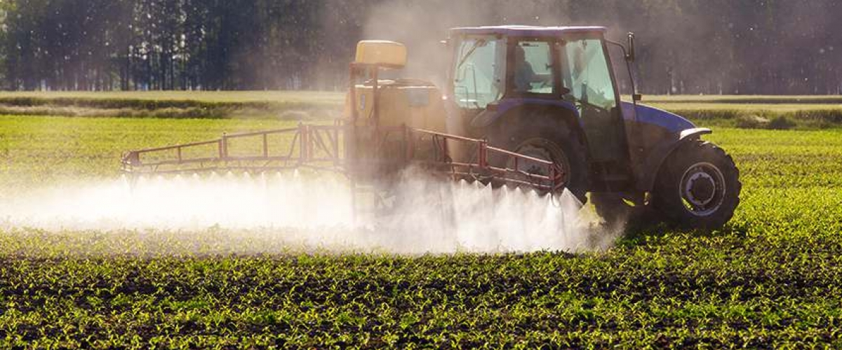 Pesticide spray dicamba