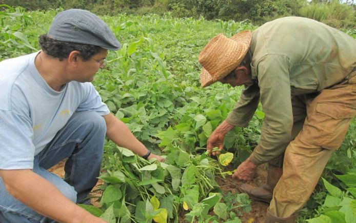 Agroecology farming