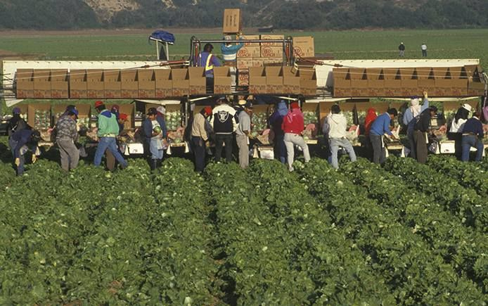 California farmworkers