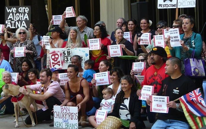 hawaii rally chlorpyrifos