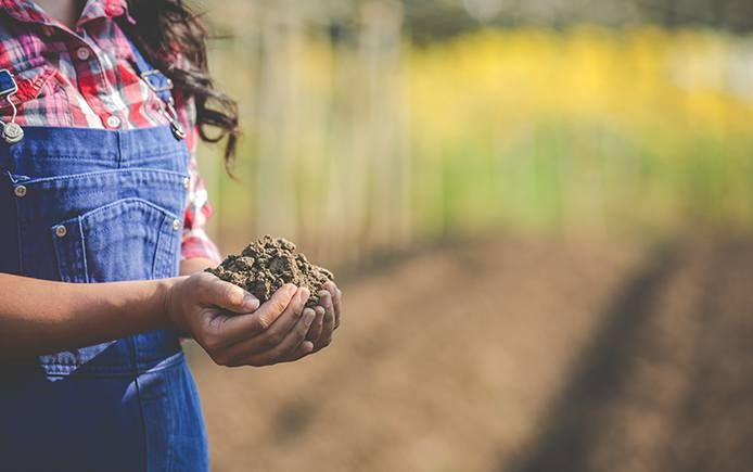 Woman farming healthy soil