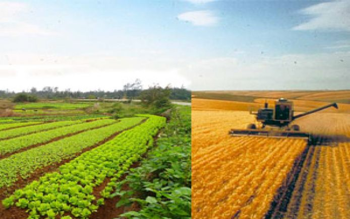 Organic vs Conventional. Is that really the question? | Pesticide ...