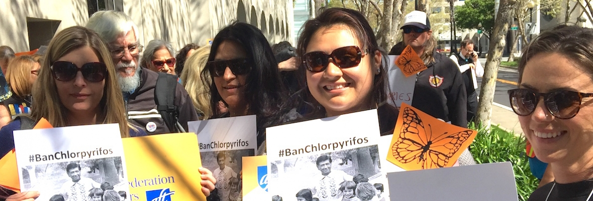 Ban chlorpyrifos march