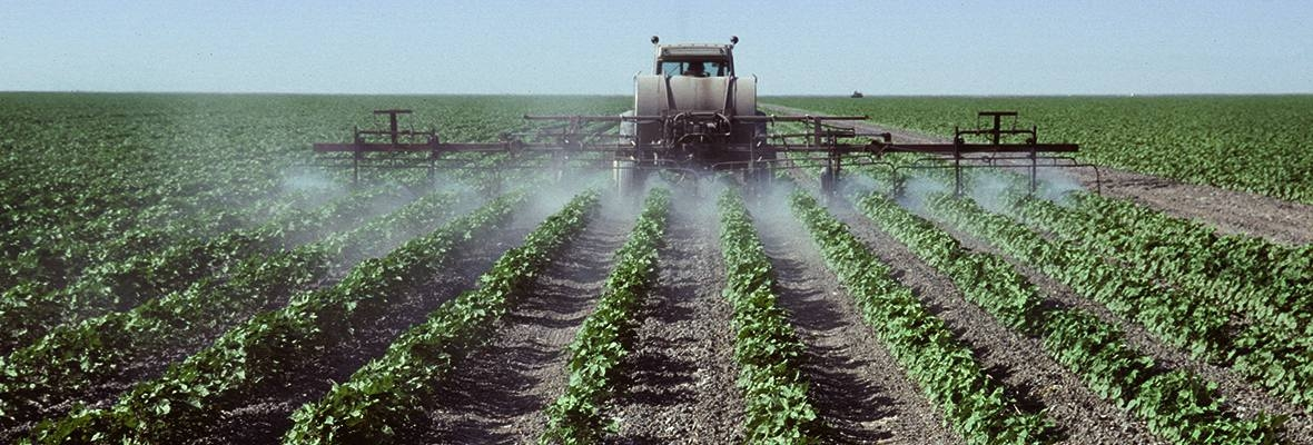 Pesticide Use Near Record High in California | Pesticide Action Network