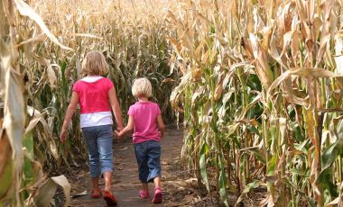 Kids in cornfield