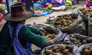 Peruvian potato market