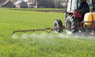 Spraying pesticides farm