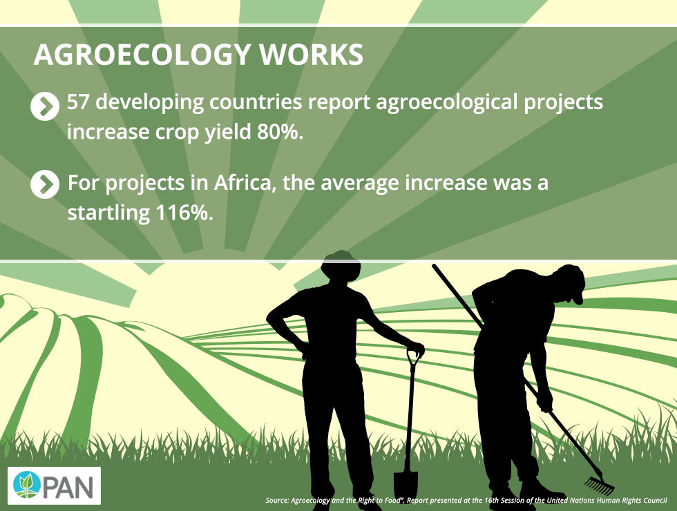 Agroecology works