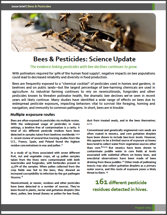 Bees & Pesticides
